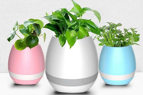 گلدان پلاستیکی گلخانه ای